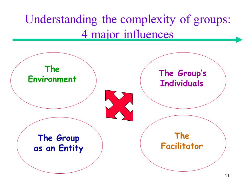 11 Understanding the complexity of groups: 4 major influences The Environment The Group's Individuals The Group as an Entity The Facilitator
