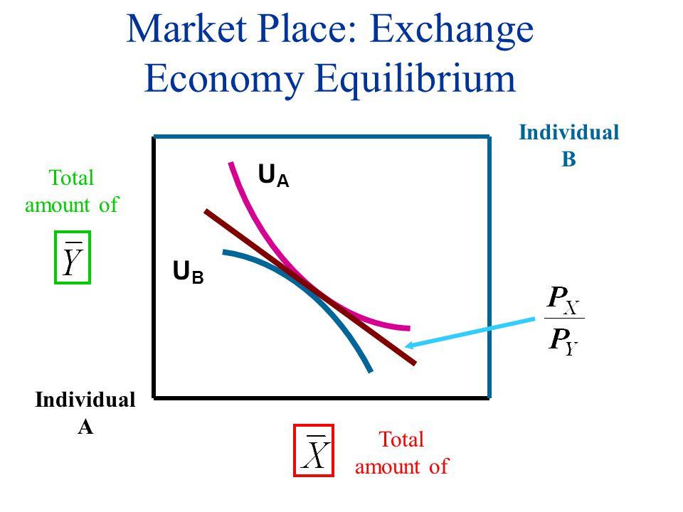 Market Place: Exchange Economy Equilibrium Individual A Total amount of Individual B UBUB UAUA