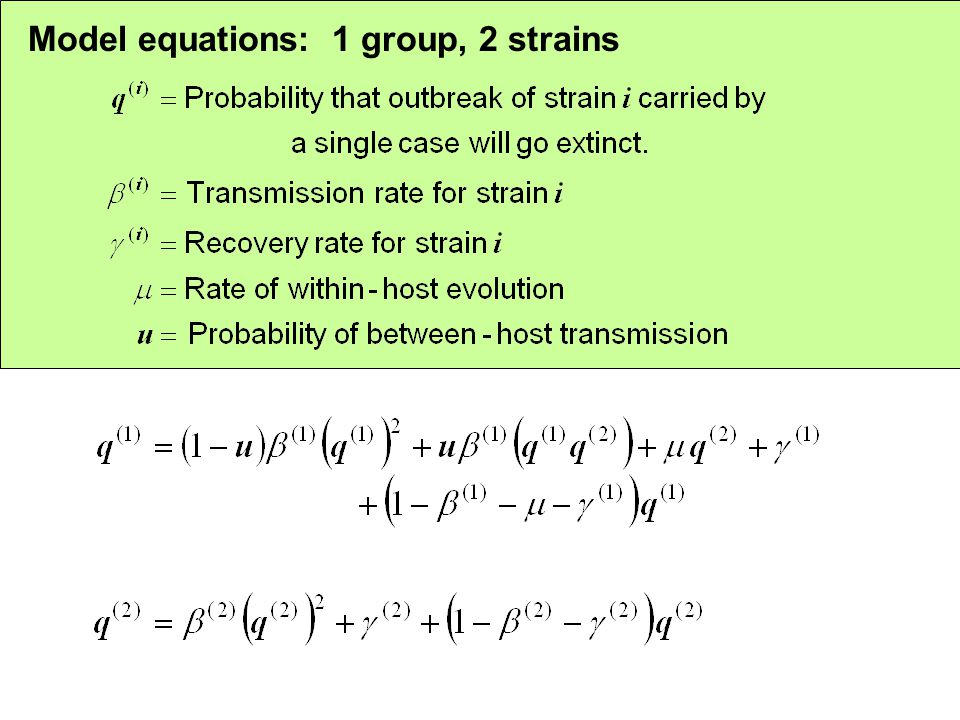 Model equations: 1 group, 2 strains