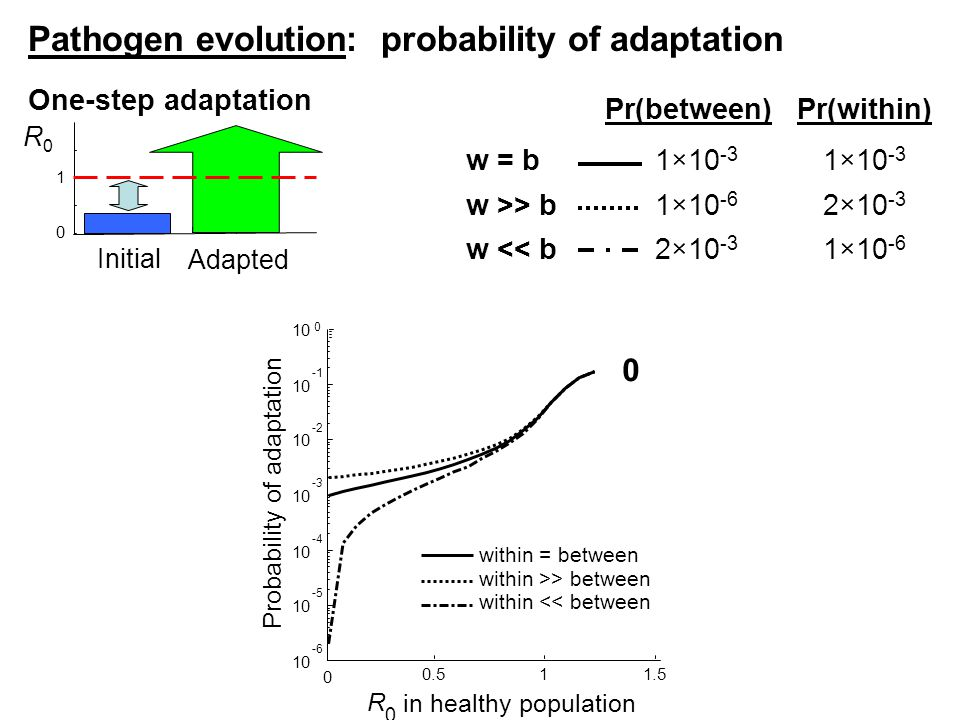0 0.511.5 10 -6 10 -5 10 -4 10 -3 10 -2 10 10 0 R 0 in healthy population Probability of adaptation within = between One-step adaptation 0 Pr(between)