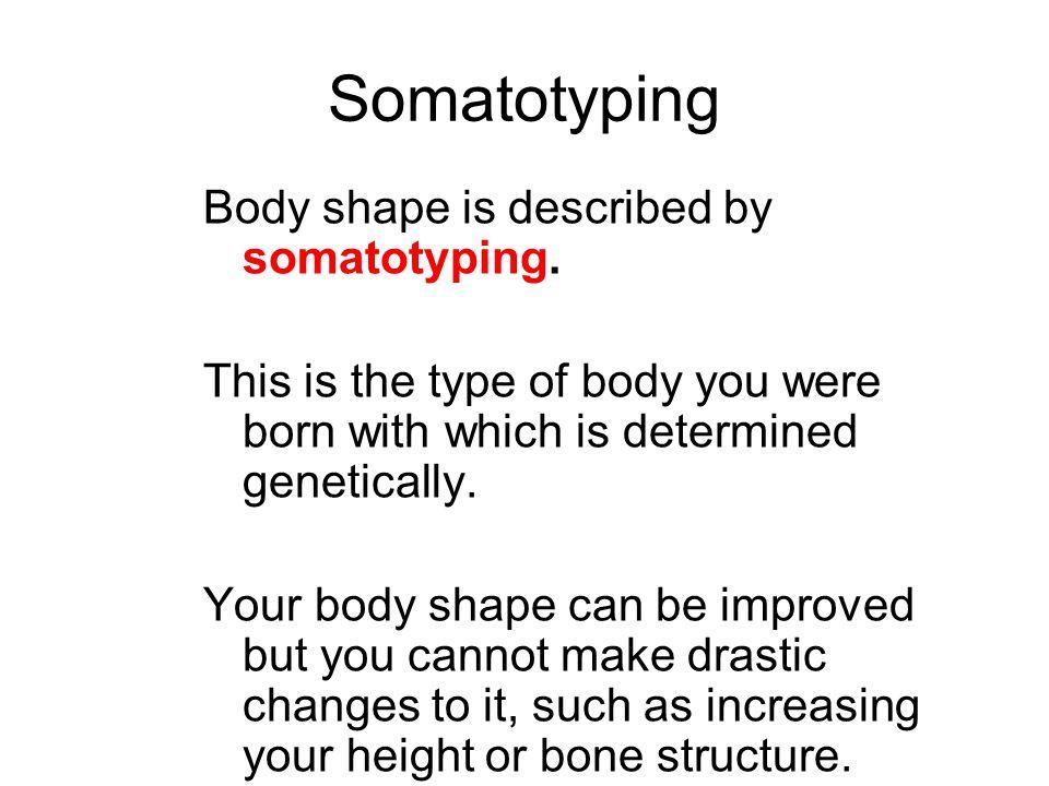 3 basic body types There are 3 basic body types: Endomorph Mesomorph Ectomorph