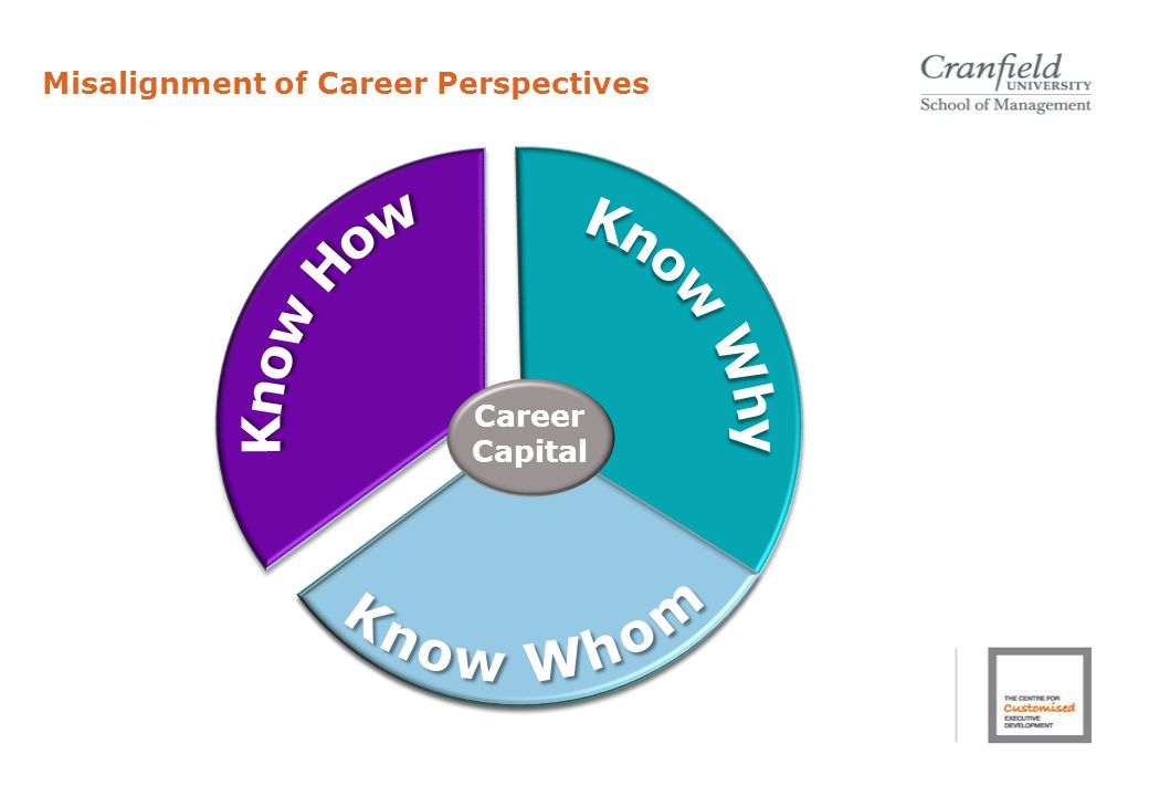Misalignment of Career Perspectives Career Capital