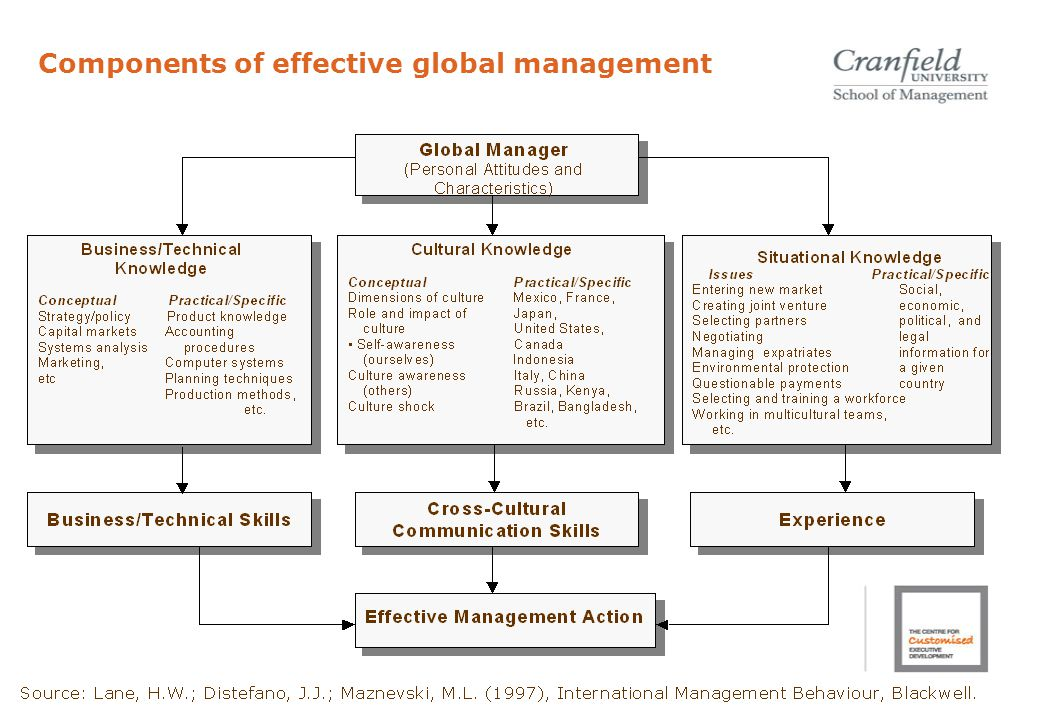 Components of effective global management