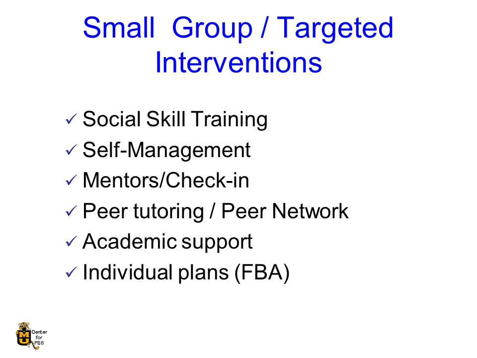 Small Group / Targeted Interventions Social Skill Training Self-Management Mentors/Check-in Peer tutoring / Peer Network Academic support Individual plans (FBA)