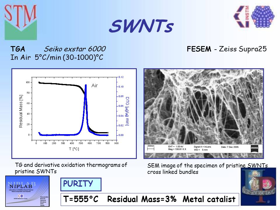 VI Convegno Nazionale sulla Scienza e Tecnologia dei Materiali SWNTs FESEM - Zeiss Supra25Seiko exstar 6000 T=555°C Residual Mass=3% Metal catalist PU