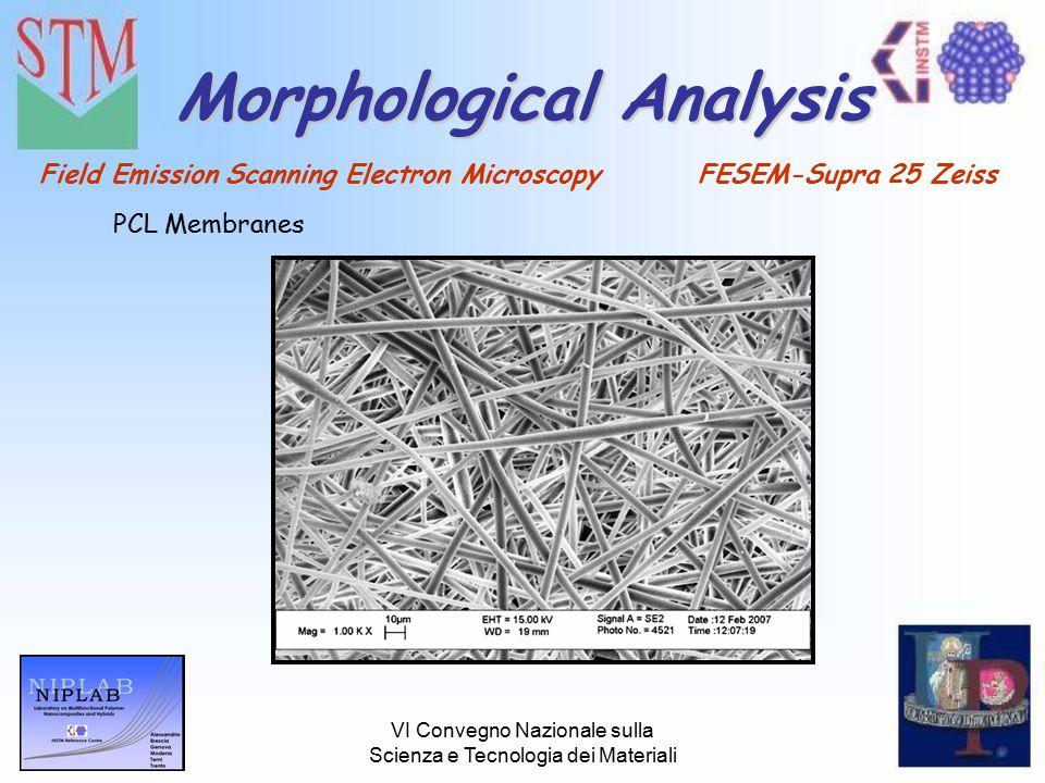 VI Convegno Nazionale sulla Scienza e Tecnologia dei Materiali Morphological Analysis Field Emission Scanning Electron Microscopy FESEM-Supra 25 Zeiss PCL Membranes