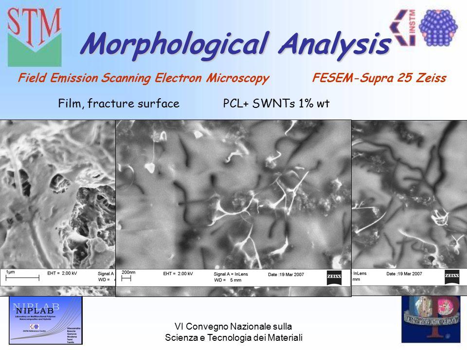 VI Convegno Nazionale sulla Scienza e Tecnologia dei Materiali Morphological Analysis Field Emission Scanning Electron Microscopy FESEM-Supra 25 Zeiss Film, fracture surfacePCL+ SWNTs 1% wt
