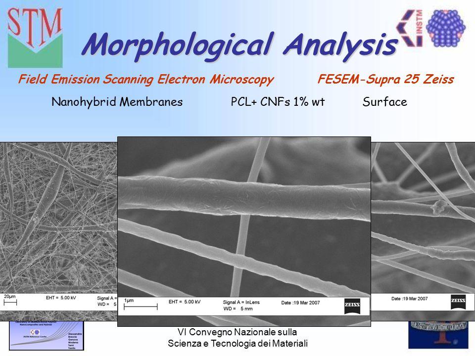 VI Convegno Nazionale sulla Scienza e Tecnologia dei Materiali Morphological Analysis Field Emission Scanning Electron Microscopy FESEM-Supra 25 Zeiss Nanohybrid Membranes PCL+ CNFs 1% wtSurface