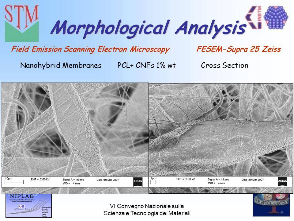 VI Convegno Nazionale sulla Scienza e Tecnologia dei Materiali Morphological Analysis Field Emission Scanning Electron Microscopy FESEM-Supra 25 Zeiss Nanohybrid MembranesPCL+ CNFs 1% wtCross Section