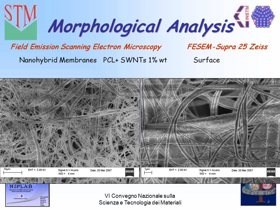 VI Convegno Nazionale sulla Scienza e Tecnologia dei Materiali Morphological Analysis Field Emission Scanning Electron Microscopy FESEM-Supra 25 Zeiss Nanohybrid MembranesPCL+ SWNTs 1% wtSurface