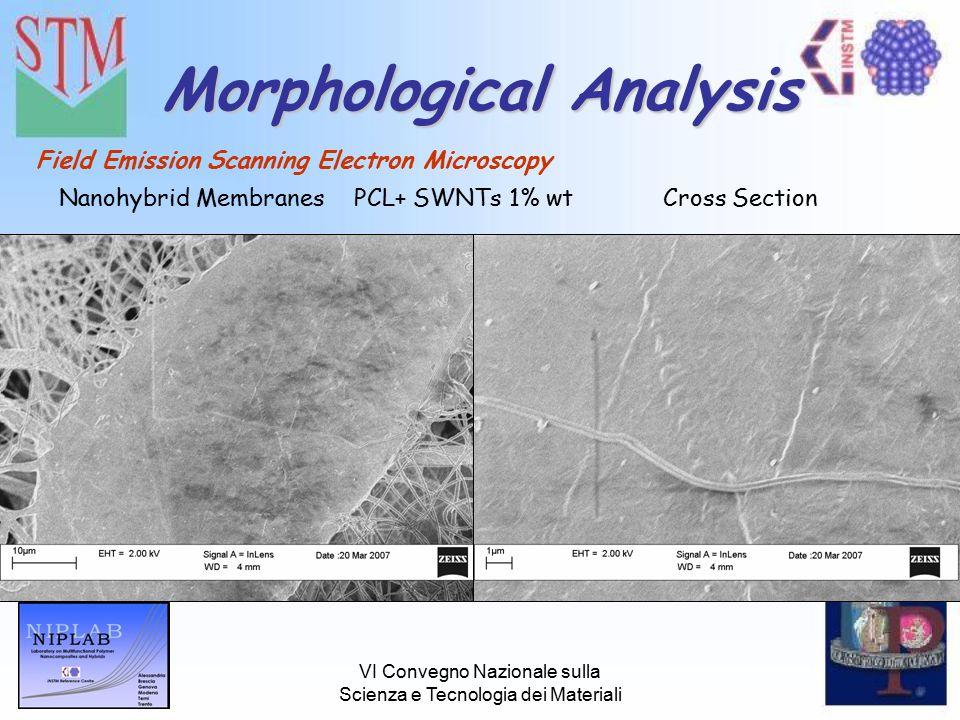 VI Convegno Nazionale sulla Scienza e Tecnologia dei Materiali Morphological Analysis Field Emission Scanning Electron Microscopy Nanohybrid MembranesPCL+ SWNTs 1% wtCross Section