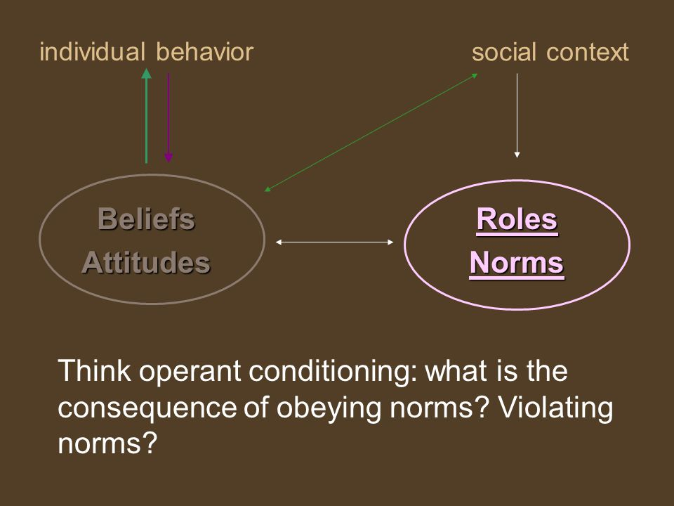 individual behavior RolesNorms social context BeliefsAttitudes Think operant conditioning: what is the consequence of obeying norms.