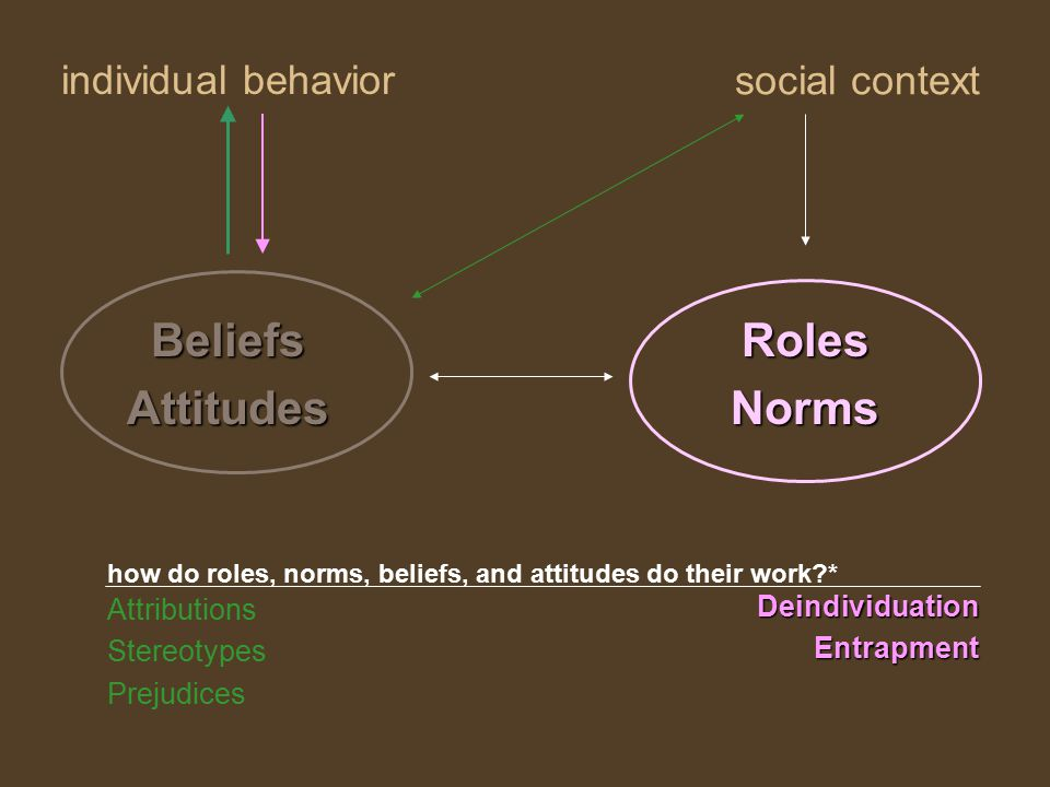 individual behavior RolesNorms social context BeliefsAttitudes Attributions Stereotypes Prejudices DeindividuationEntrapment how do roles, norms, beliefs, and attitudes do their work *