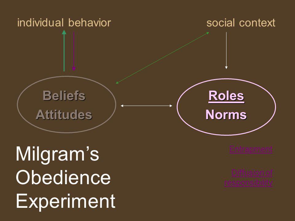 individual behavior RolesNorms social context BeliefsAttitudes Entrapment Diffusion of responsibility Milgram's Obedience Experiment