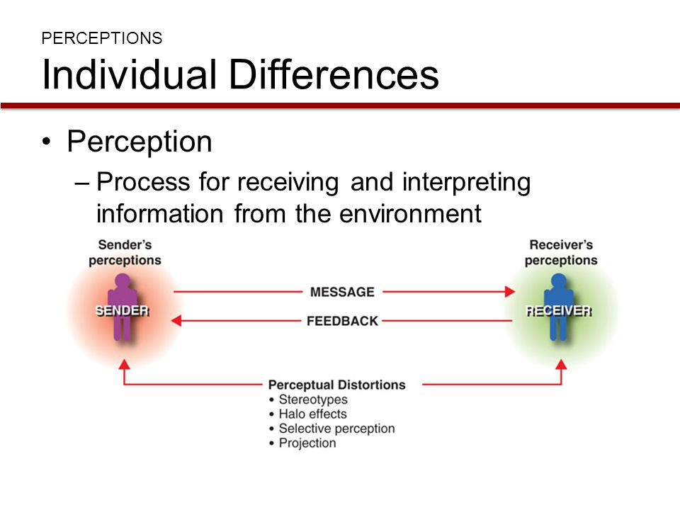 PERCEPTIONS Individual Differences Stereotypes –Using limited attributes of a group to describe an entire group or individuals in the group Halo effect –Using one characteristic of a person to form an overall impression