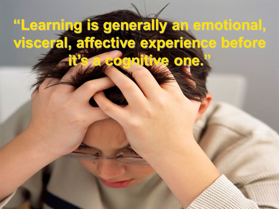 Learning is generally an emotional, visceral, affective experience before it's a cognitive one.