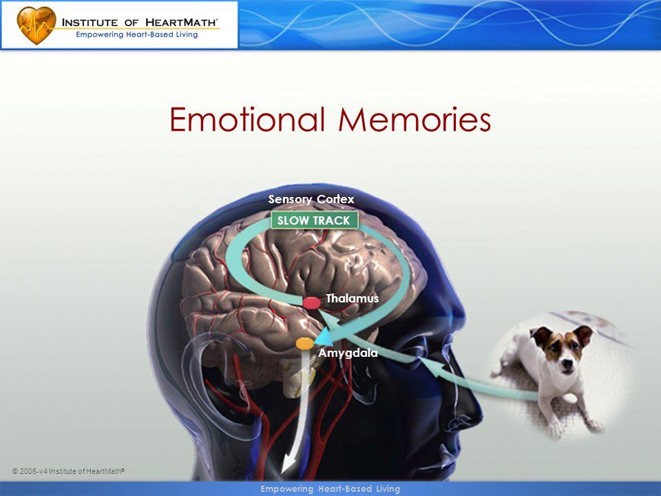 © 2005-v4 Institute of HeartMath ® Emotional Memories SLOW TRACK Sensory Cortex Thalamus Amygdala Empowering Heart-Based Living