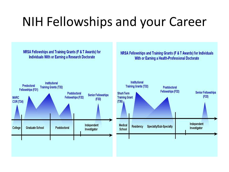 NIH Fellowships and your Career