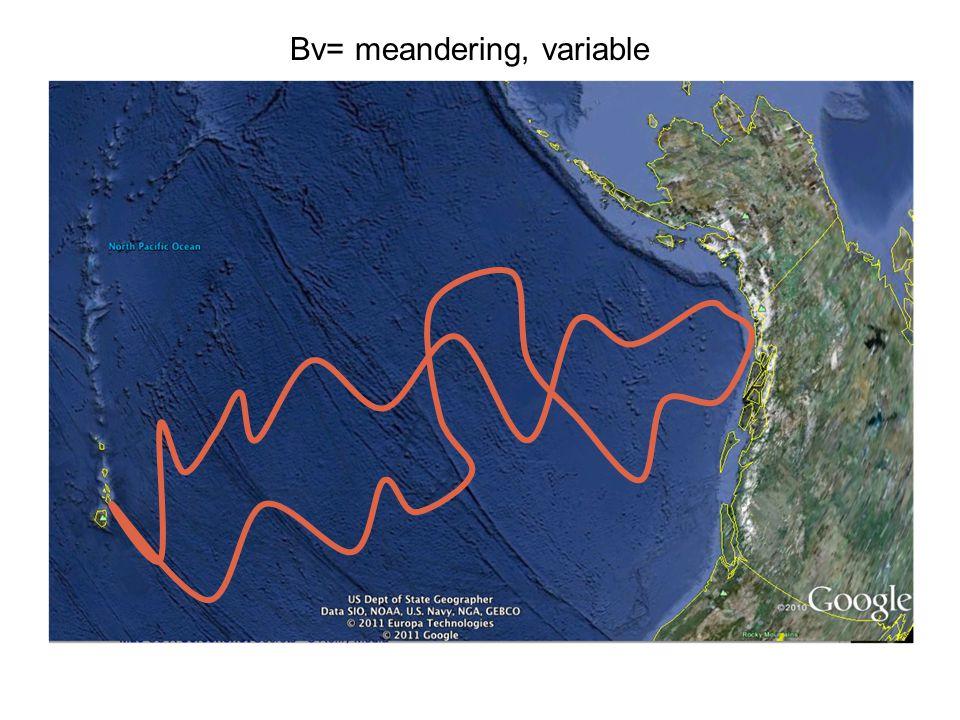 Bv= meandering, variable