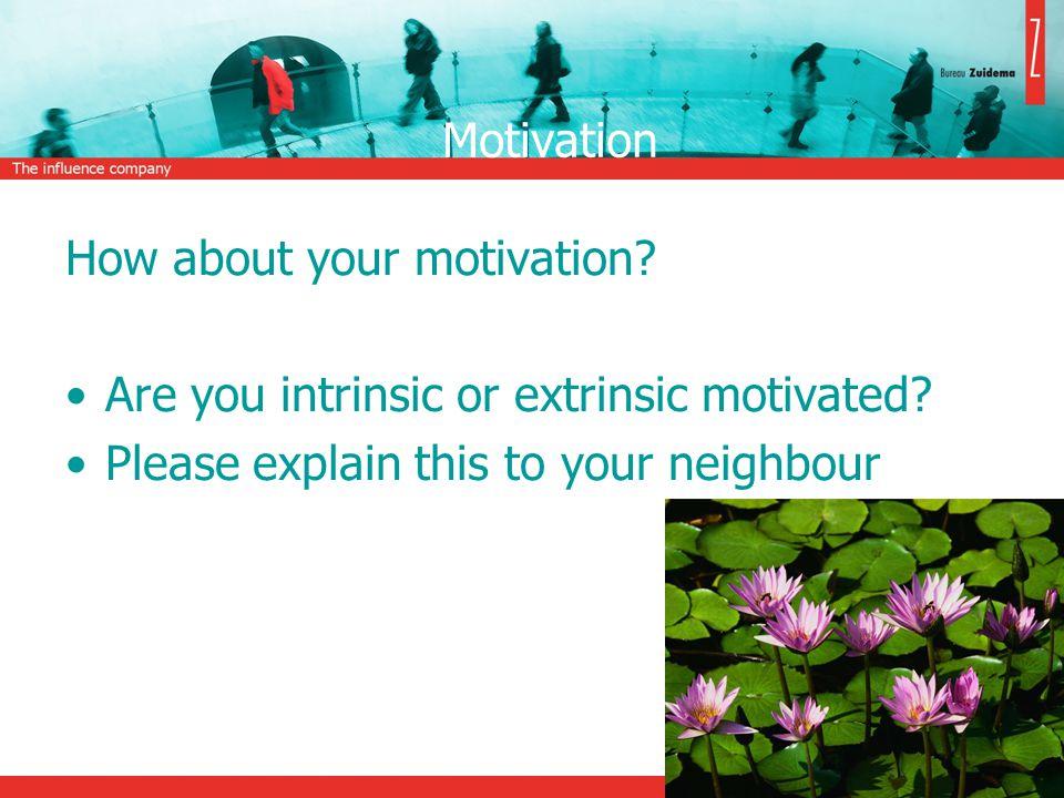 Herzberg's theory Motivators; (e.g.