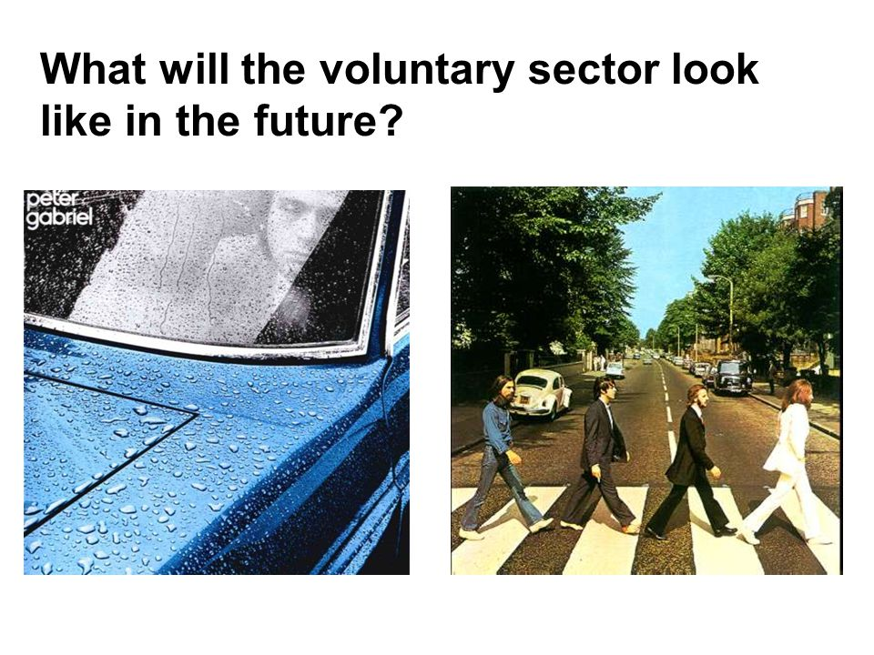 What will the voluntary sector look like in the future