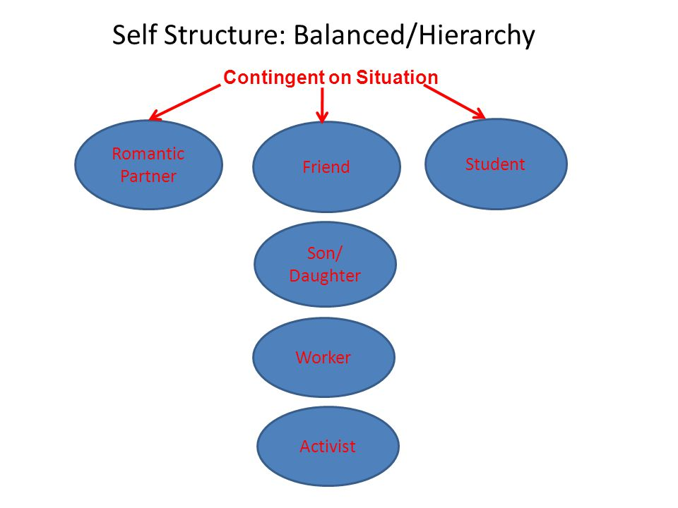 Self Structure: Balanced/Hierarchy Romantic Partner Friend Student Son/ Daughter Worker Activist Contingent on Situation
