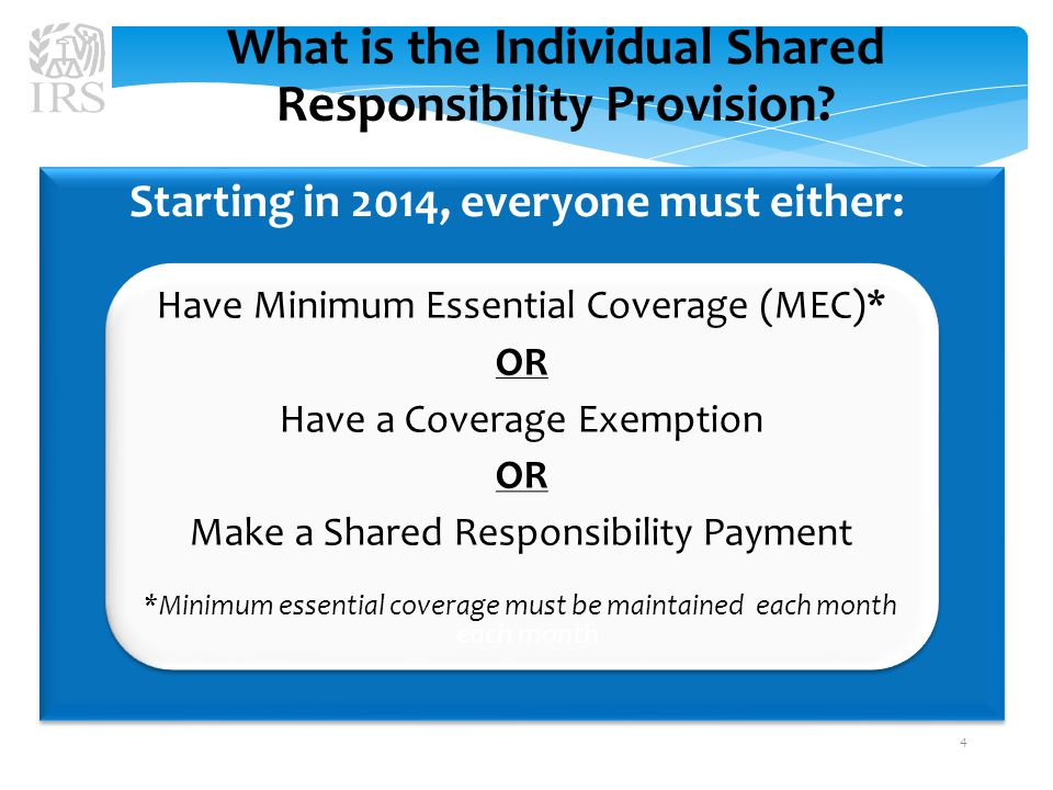 What is the Individual Shared Responsibility Provision.