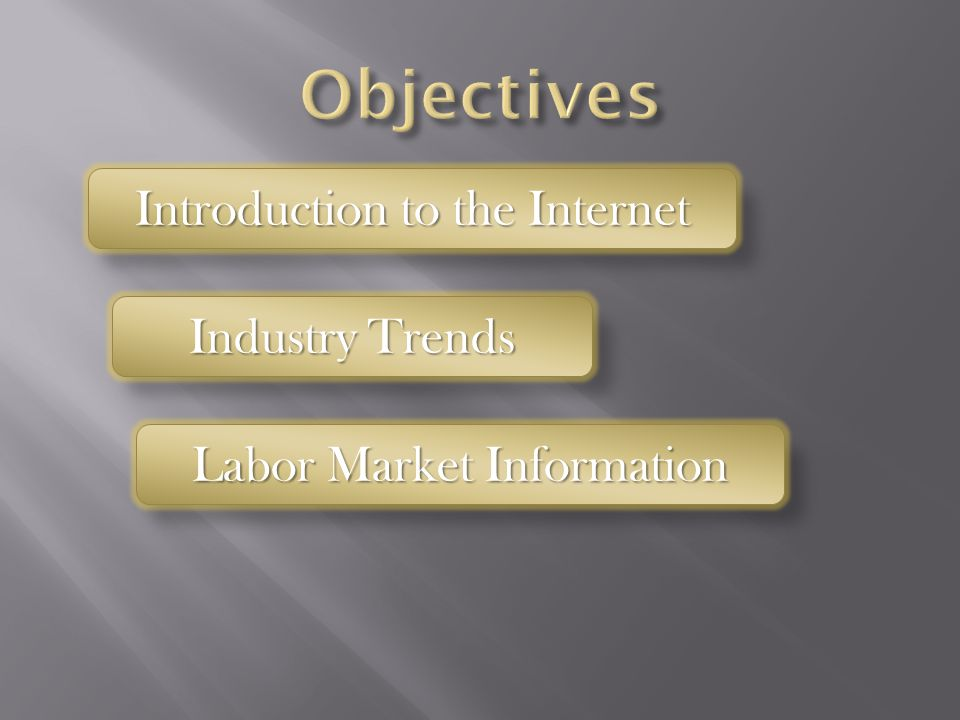 Introduction to the Internet Industry Trends Labor Market Information