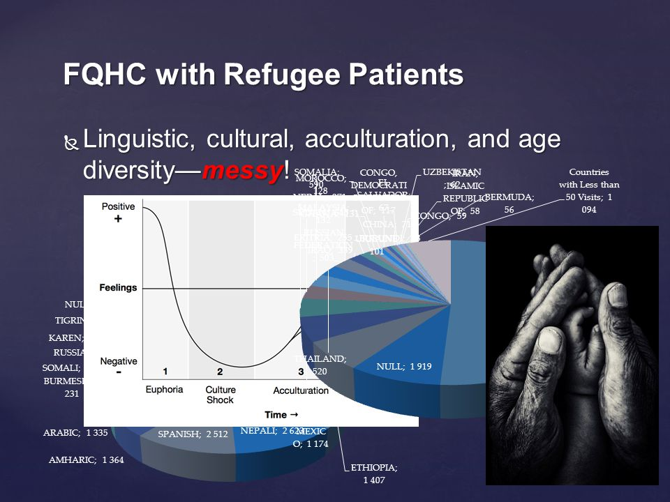  Linguistic, cultural, acculturation, and age diversity—messy! FQHC with Refugee Patients