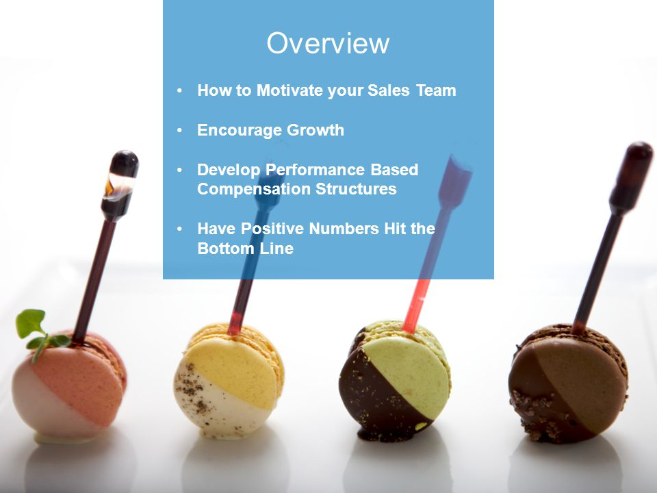 Overview How to Motivate your Sales Team Encourage Growth Develop Performance Based Compensation Structures Have Positive Numbers Hit the Bottom Line
