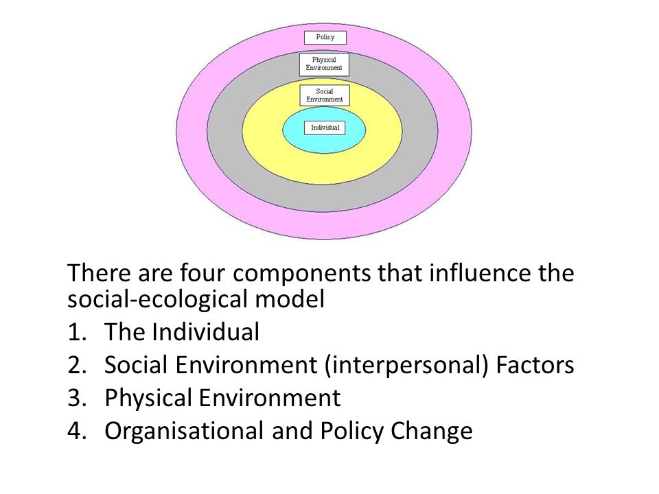 There are four components that influence the social-ecological model 1.The Individual 2.Social Environment (interpersonal) Factors 3.Physical Environm