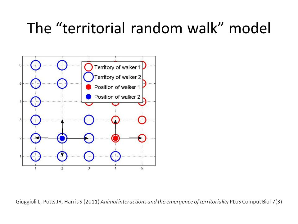"The ""territorial random walk"" model Giuggioli L, Potts JR, Harris S (2011) Animal interactions and the emergence of territoriality PLoS Comput Biol 7("
