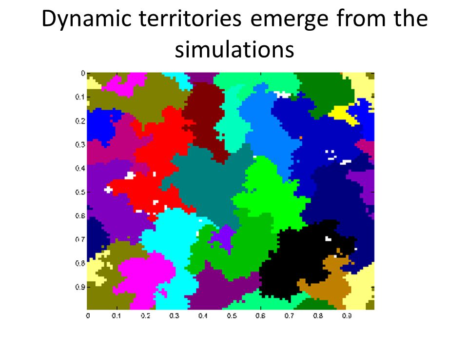 Dynamic territories emerge from the simulations