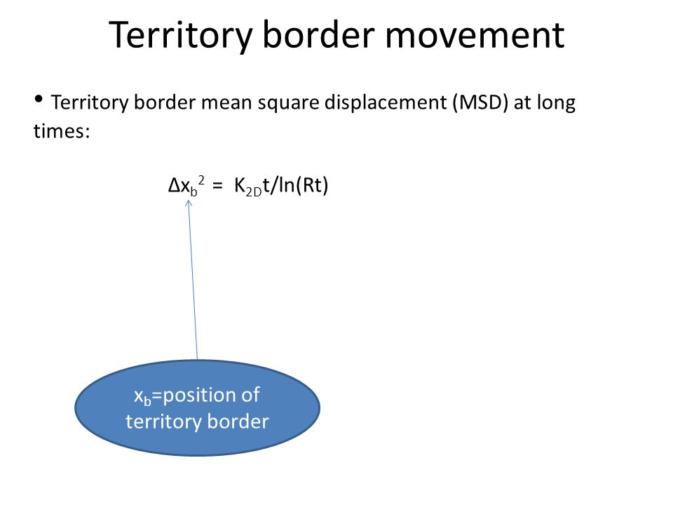 Territory border mean square displacement (MSD) at long times: Δx b 2 = K 2D t/ln(Rt) Territory border movement x b =position of territory border