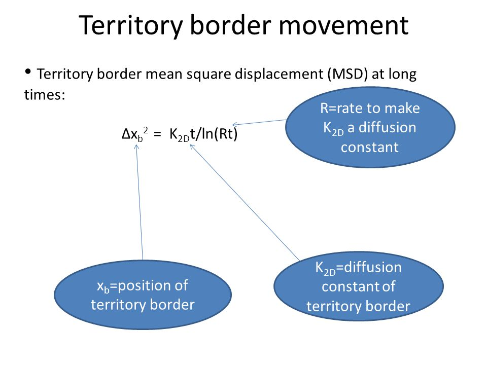 Territory border movement x b =position of territory border K 2D =diffusion constant of territory border R=rate to make K 2D a diffusion constant Terr