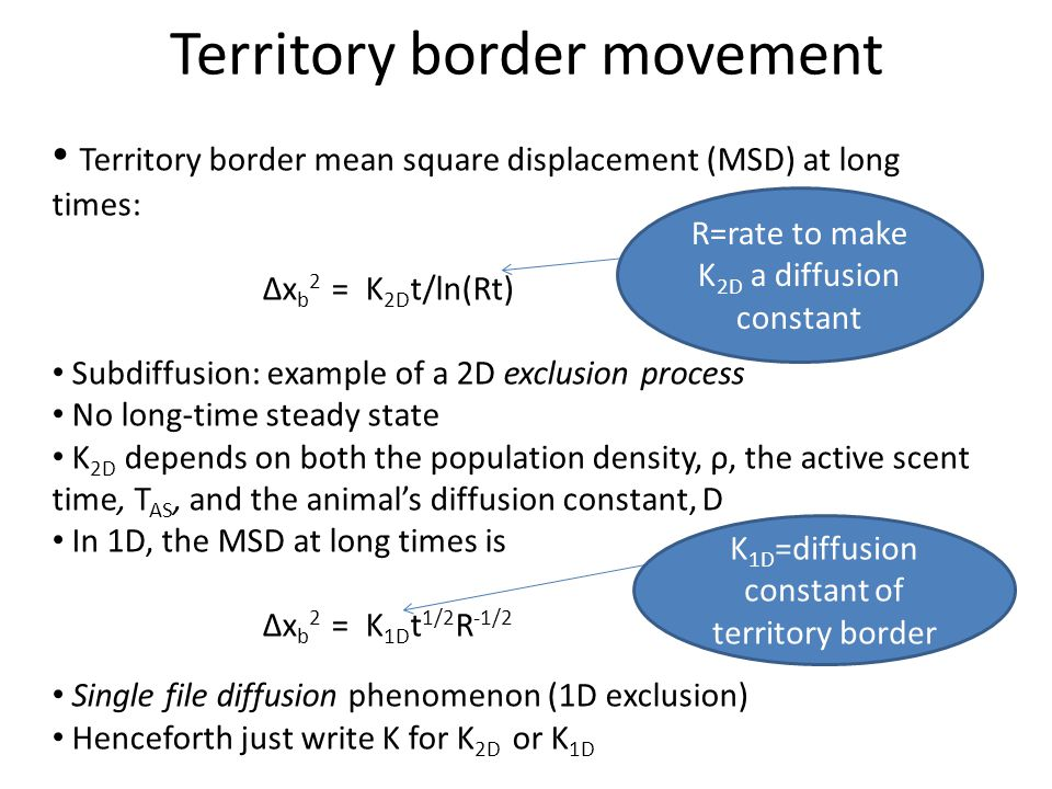 Territory border mean square displacement (MSD) at long times: Δx b 2 = K 2D t/ln(Rt) Subdiffusion: example of a 2D exclusion process No long-time ste