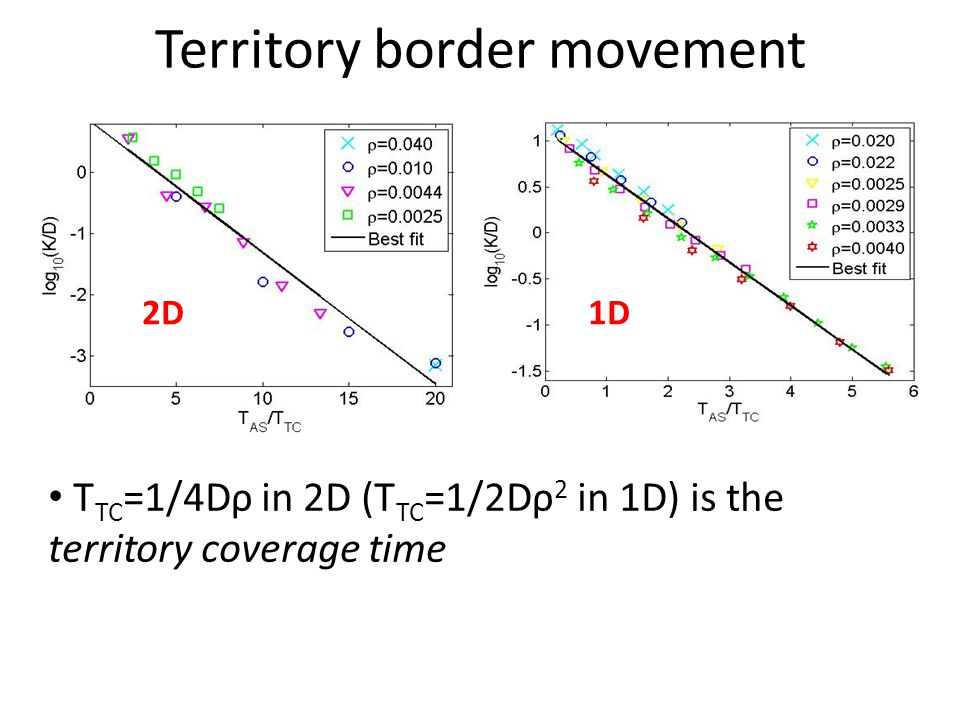 Territory border movement T TC =1/4Dρ in 2D (T TC =1/2Dρ 2 in 1D) is the territory coverage time 2D1D