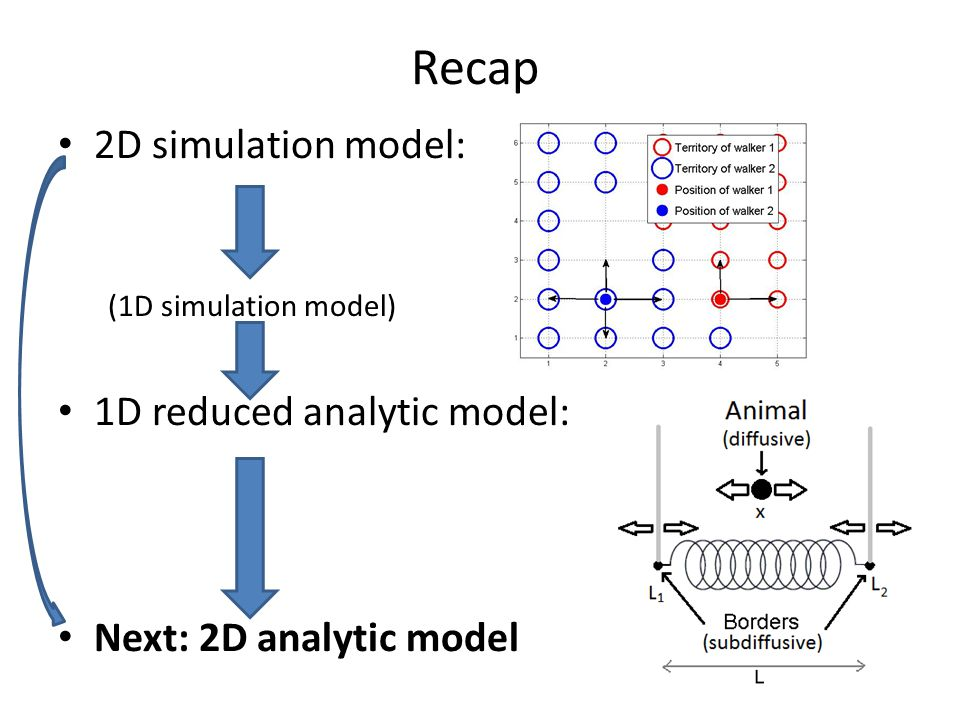 Recap 2D simulation model: (1D simulation model) 1D reduced analytic model: Next: 2D analytic model