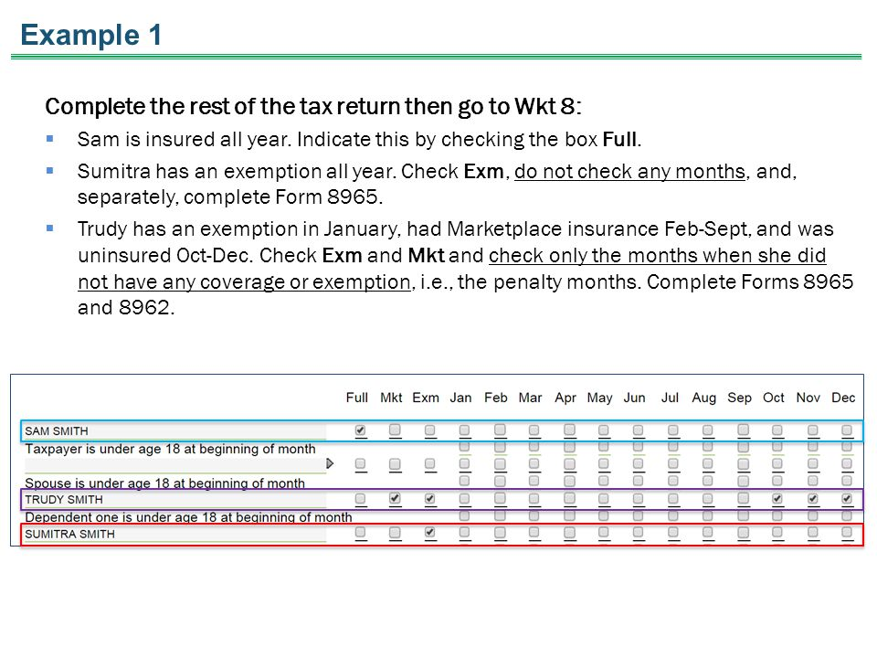 Example 1 Complete the rest of the tax return then go to Wkt 8:  Sam is insured all year.