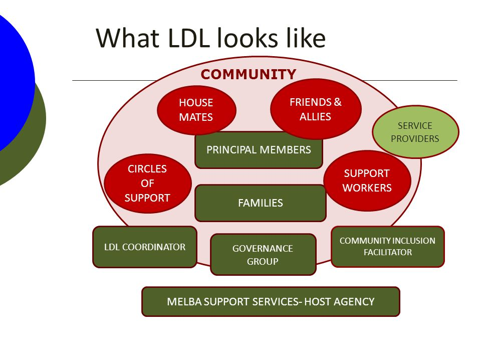 What LDL looks like FAMILIES LDL COORDINATOR COMMUNITY INCLUSION FACILITATOR MELBA SUPPORT SERVICES- HOST AGENCY GOVERNANCE GROUP PRINCIPAL MEMBERS SUPPORT WORKERS CIRCLES OF SUPPORT FRIENDS & ALLIES HOUSE MATES COMMUNITY SERVICE PROVIDERS
