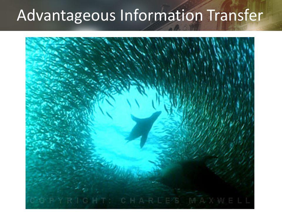 Advantageous Information Transfer