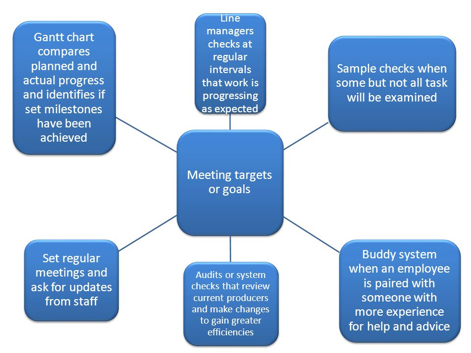 Meeting targets or goals Line managers checks at regular intervals that work is progressing as expected Sample checks when some but not all task will be examined Buddy system when an employee is paired with someone with more experience for help and advice Audits or system checks that review current producers and make changes to gain greater efficiencies Set regular meetings and ask for updates from staff Gantt chart compares planned and actual progress and identifies if set milestones have been achieved