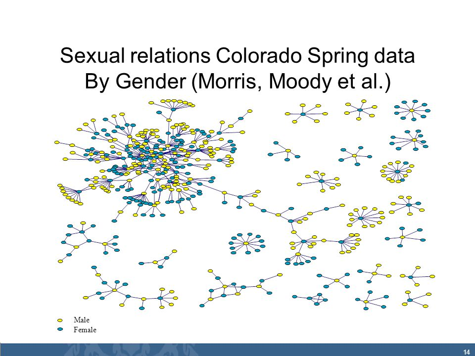 14 Sexual relations Colorado Spring data By Gender (Morris, Moody et al.) Male Female