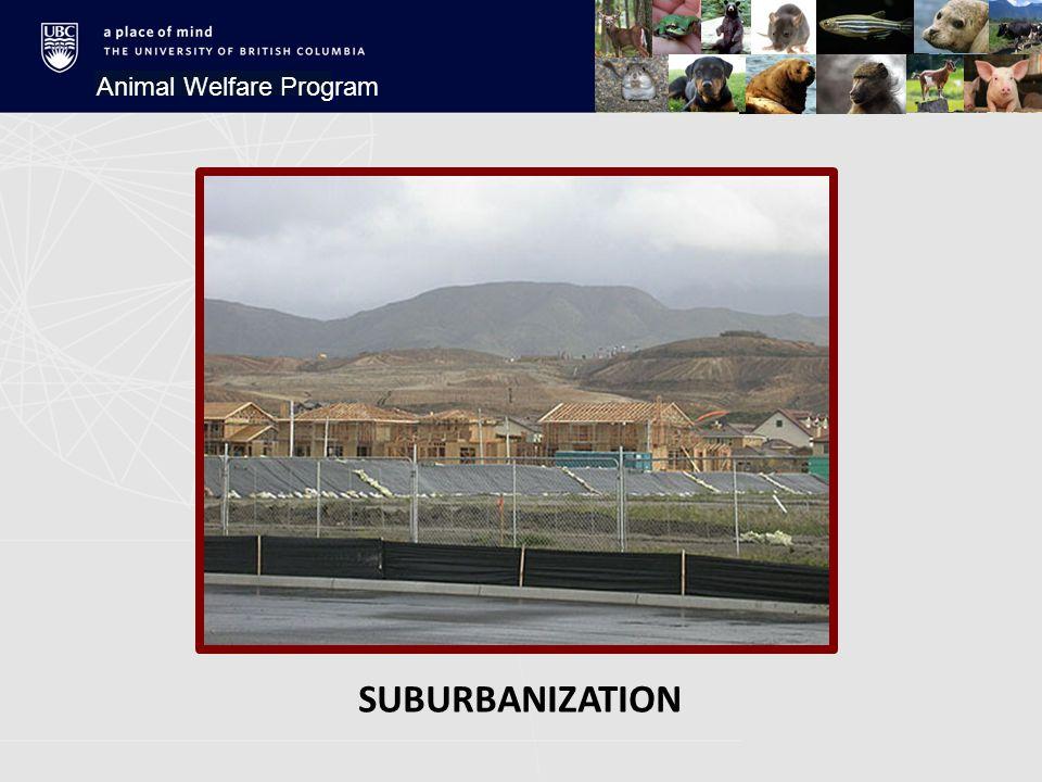 SUBURBANIZATION Animal Welfare Program