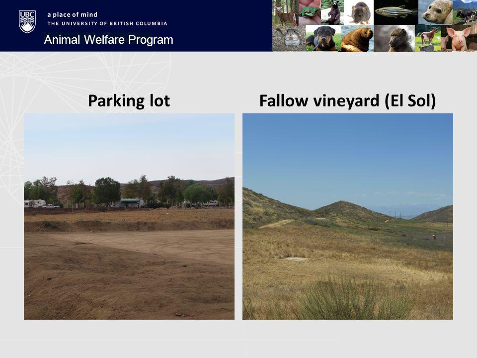 Parking lotFallow vineyard (El Sol) Animal Welfare Program
