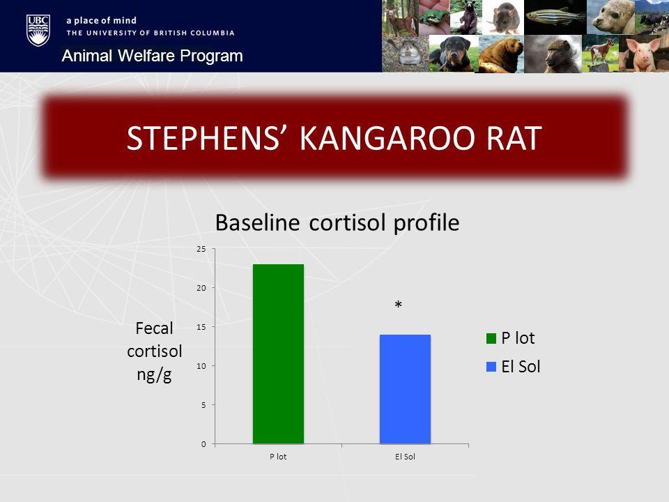 Animal Welfare Program STEPHENS' KANGAROO RAT