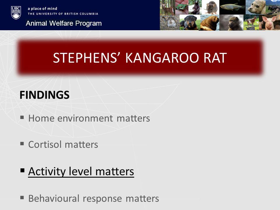 Animal Welfare Program FINDINGS  Home environment matters  Cortisol matters  Activity level matters  Behavioural response matters STEPHENS' KANGAROO RAT