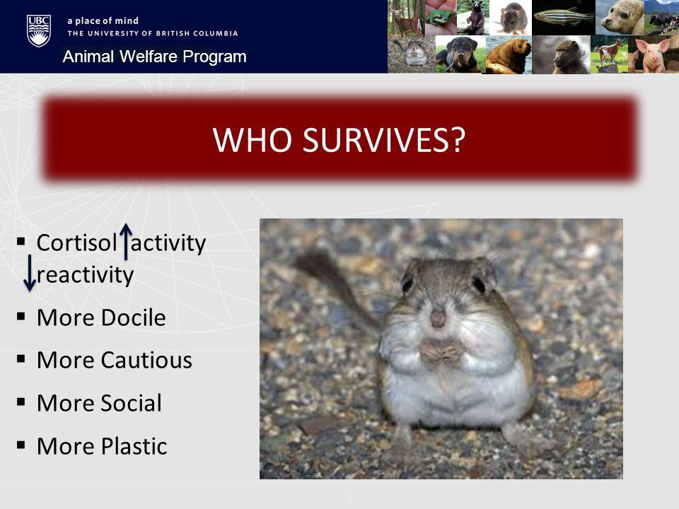 Animal Welfare Program WHO SURVIVES.