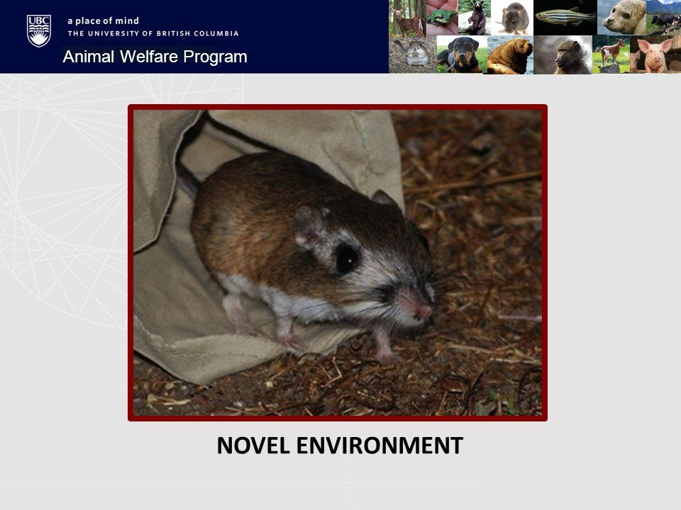 NOVEL ENVIRONMENT Animal Welfare Program