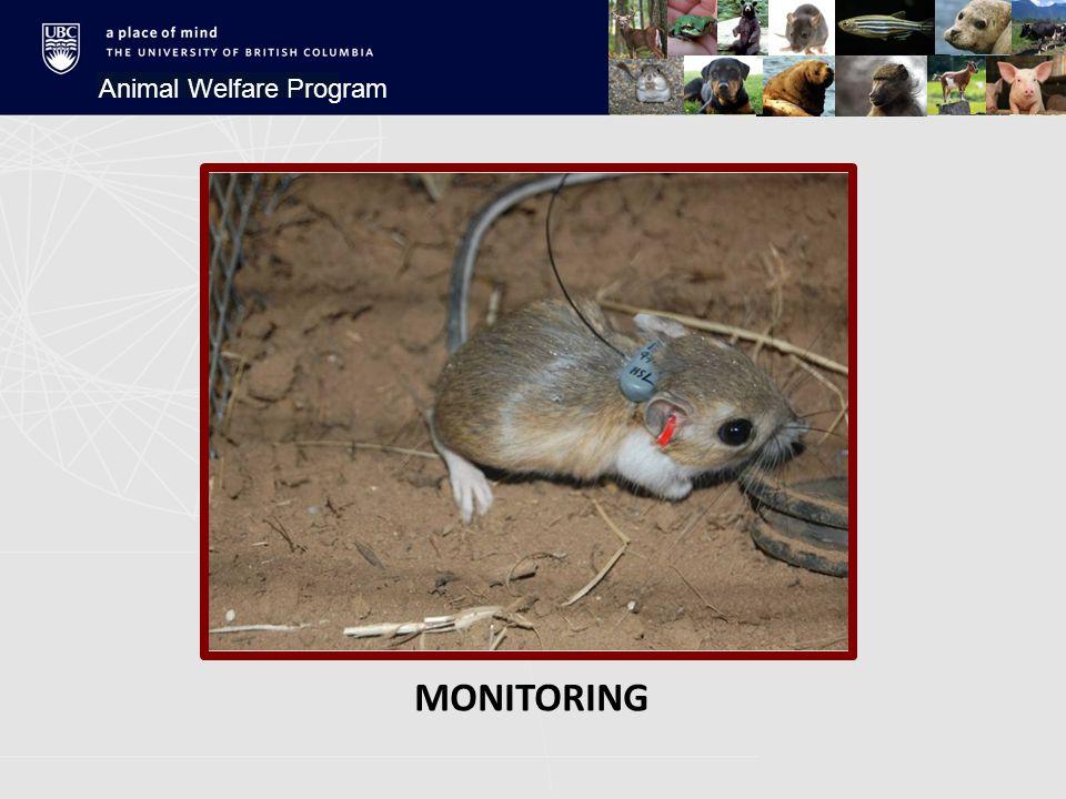 MONITORING Animal Welfare Program